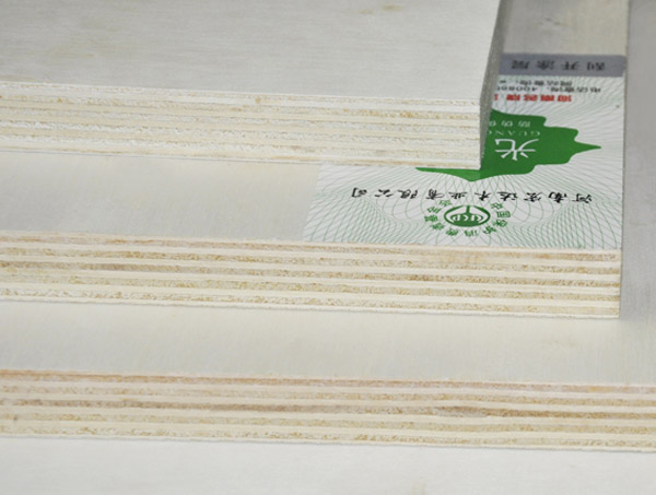 Poplar plywood multilayered